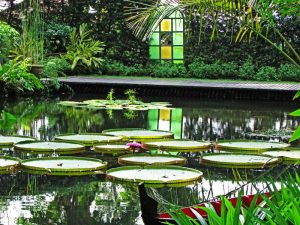 Best Gardens In Penang